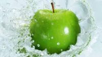 PROXIMATE MINERAL AND ANTI-NUTRITIONAL COMPOSITION OF SODIUM APPLE